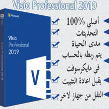 Picture of Visio Professional 2019